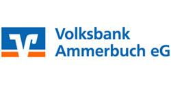 logo_vb_ammerbuch
